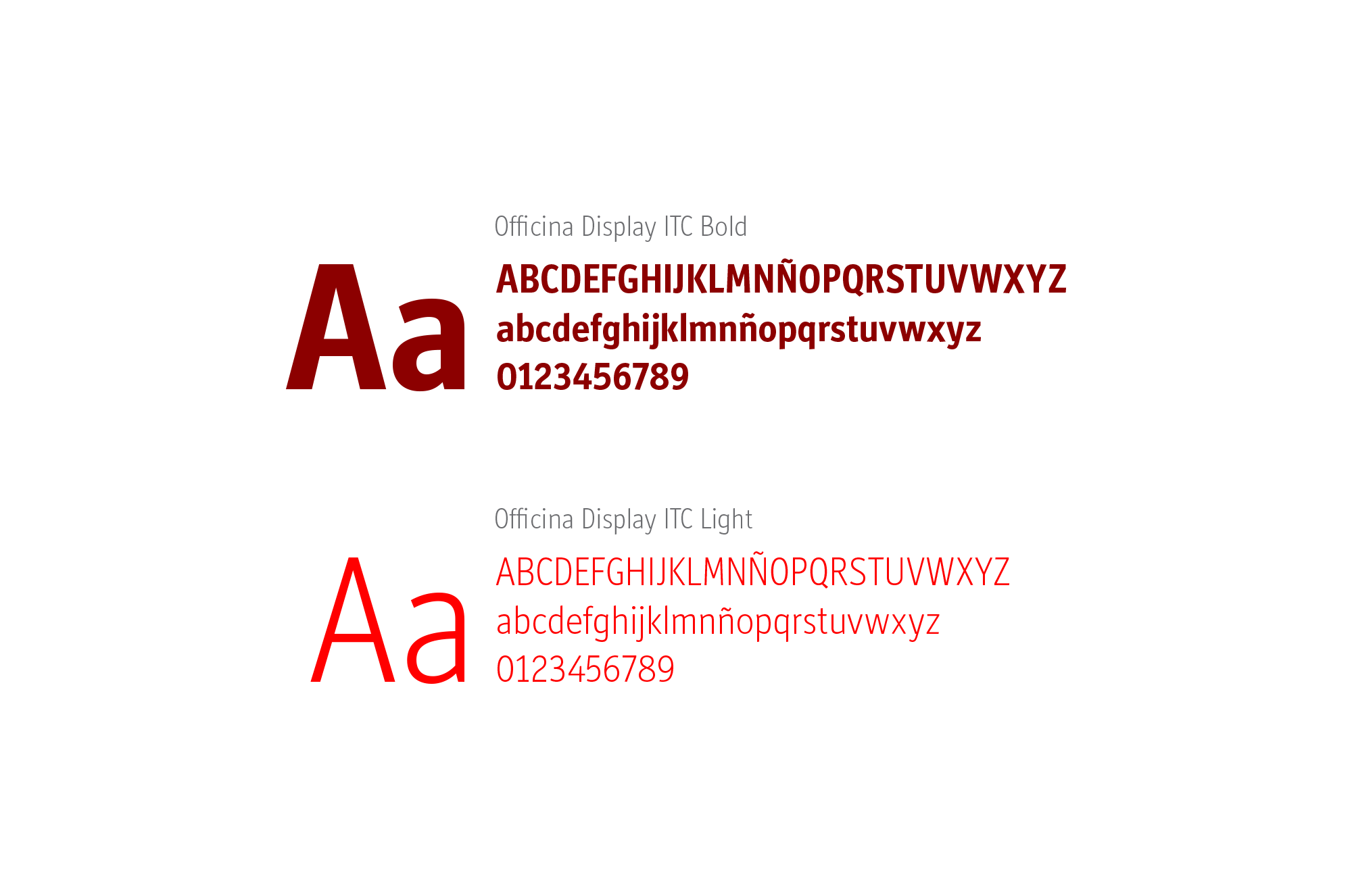 raniev-rod-alvarez-diseño-gráfico-queretaro-iqbit-10-typography
